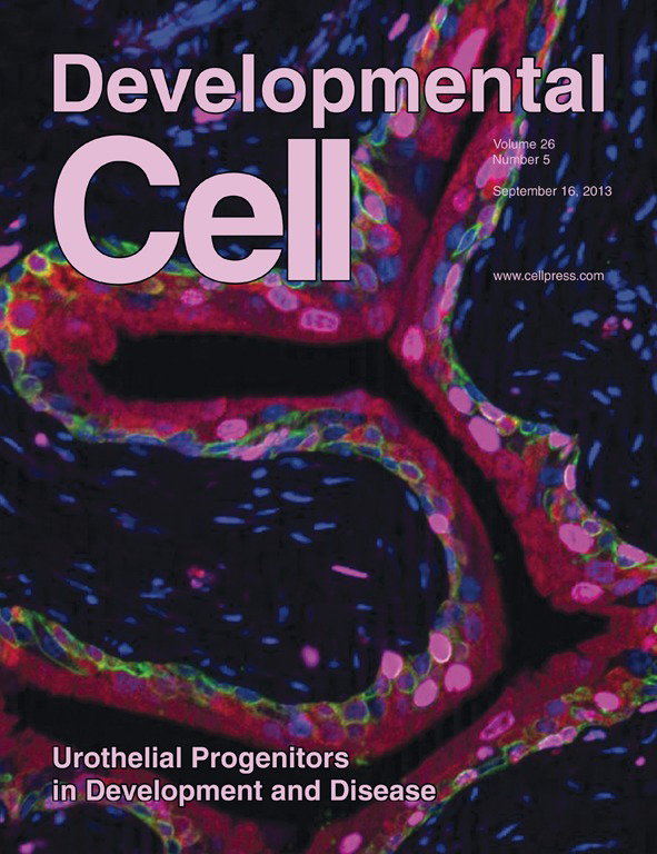 Gandhi et. al. publication in Developmental Cell
